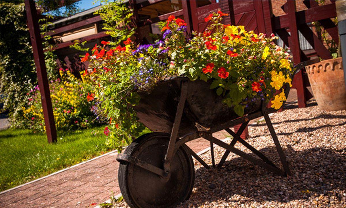 Weston care home garden