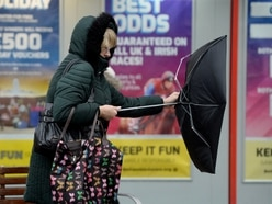 Weather warnings as high winds and heavy rain lash the West Midlands