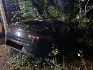 The car collided with a tree in Stourbridge. Photo: Stourbridge Fire Station @WMFSStourbridge