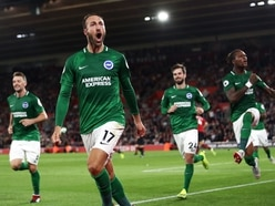 Brighton vs Wolves: The inside track on the Seagulls