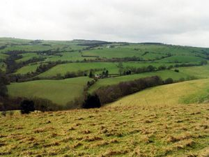 The Rowley Hills