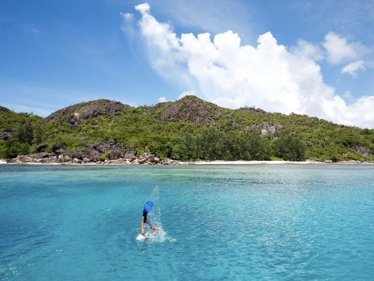 A diver descends into the water in the Seychelles (Tate Drucker/The Nature Conservancy via AP)