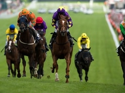 Jack Averty: Don't want to be a nag but is horse racing so bad after all?
