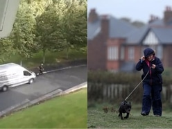 Footage shows gardeners using leaf blowers despite Storm Ali's strong winds
