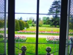 Shugborough's window on the world
