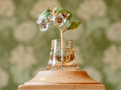 Precious Fabergé flower worth up to £1 million unveiled at Himley Hall