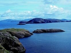 Best seabird breeding season for Outer Hebrides island since 2000