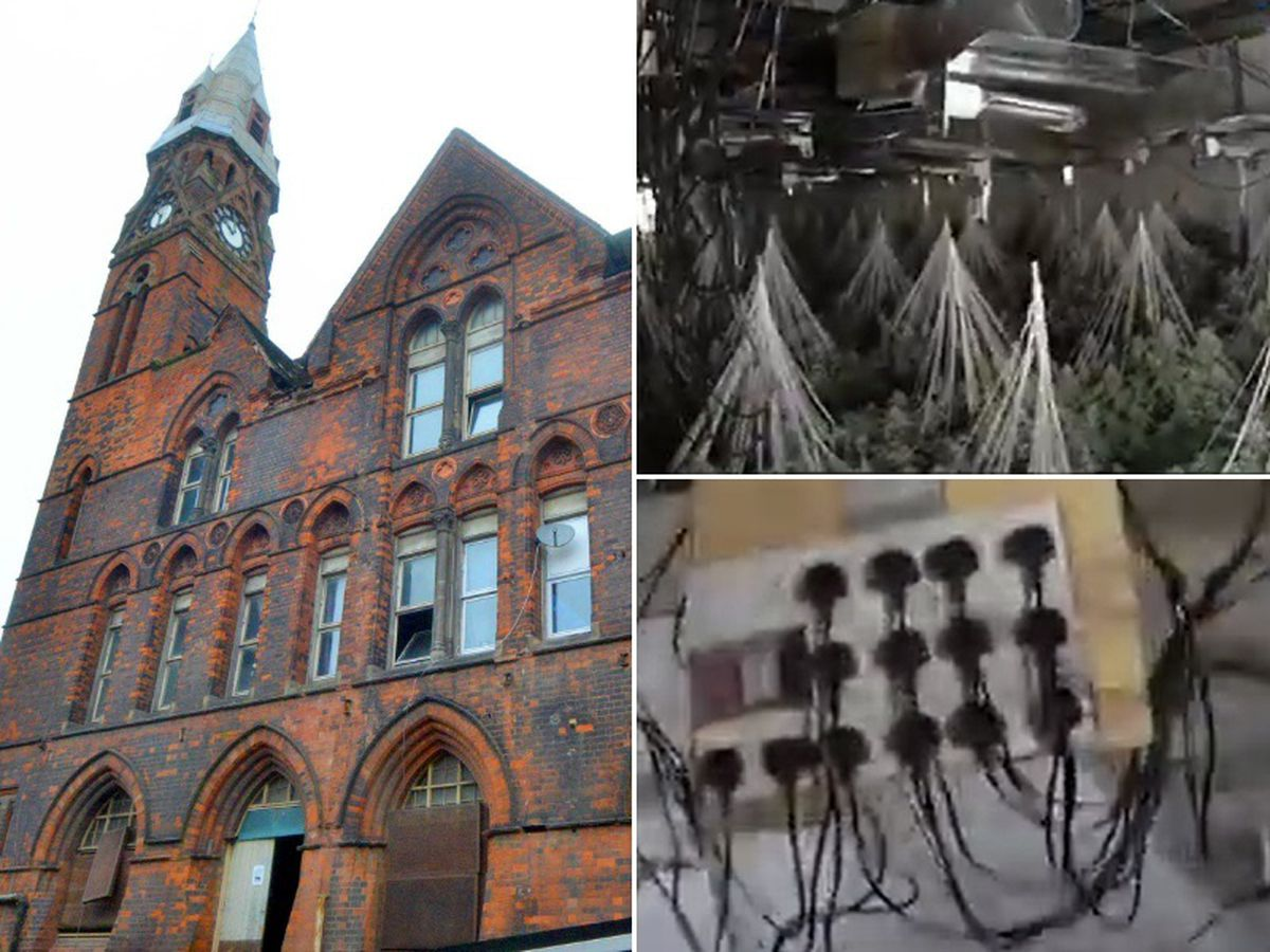 A huge cannabis factory was found growing inside the old Kenrick building