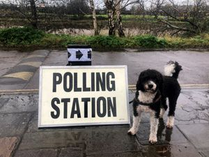 A small dog stands next to a polling station sign