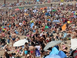 In Pictures: Surf's up as sunseekers swarm to beaches