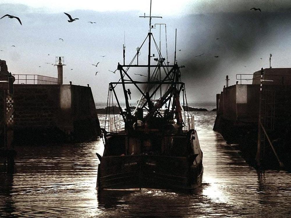 EU claims better fish quotas; environmentalists disagree