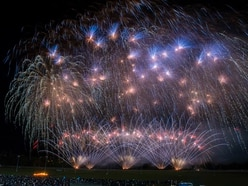 GALLERY: Wolverhampton and Himley Hall fireworks light up Black Country skies