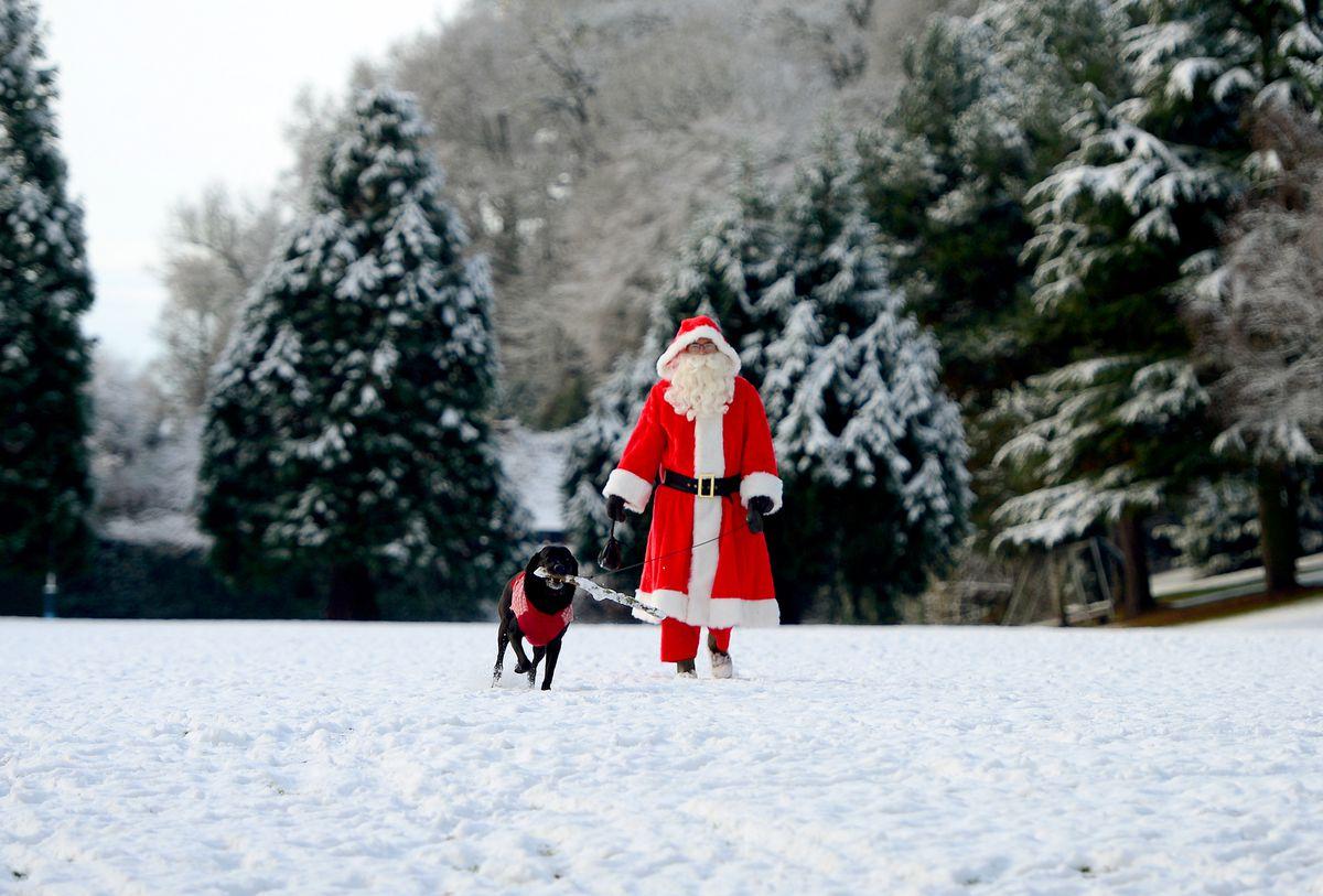 A participant walks his dog