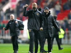 Wolves promotion would be 'huge for Black Country business'