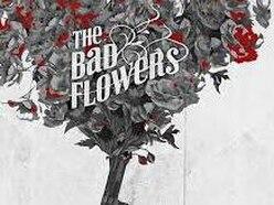 The Bad Flowers, Starting Gun - album review