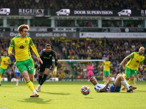 Norwich City's Josh Sargent