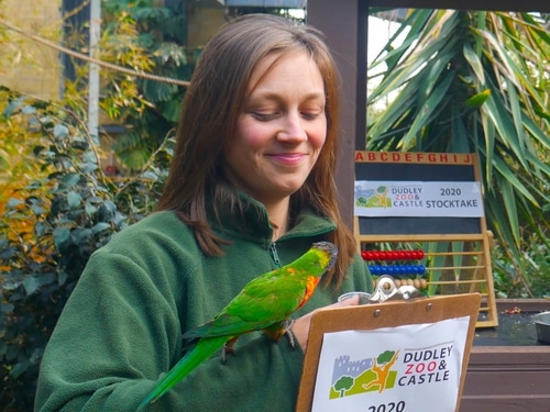 How many animals? Dudley Zoo keepers get counting for annual animal stock take