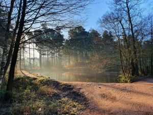 New trails and path improvements will be able to take place at Cannock Chase