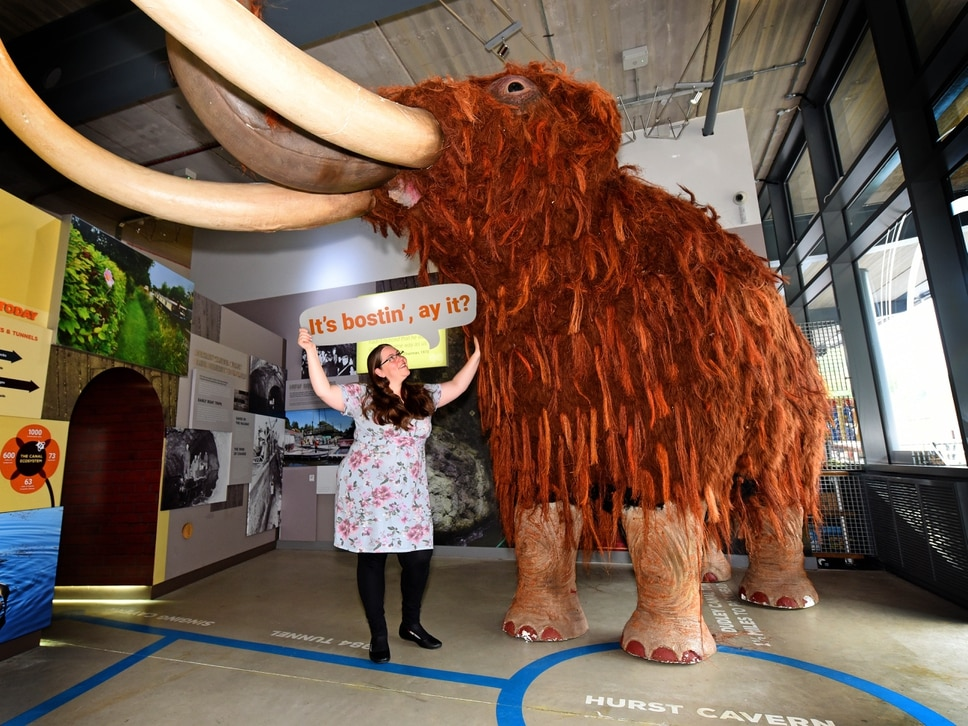 Dudley Canal Trust welcomes woolly mammoth