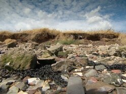 Coastal landfill sites set to spill over into sea, expert warns