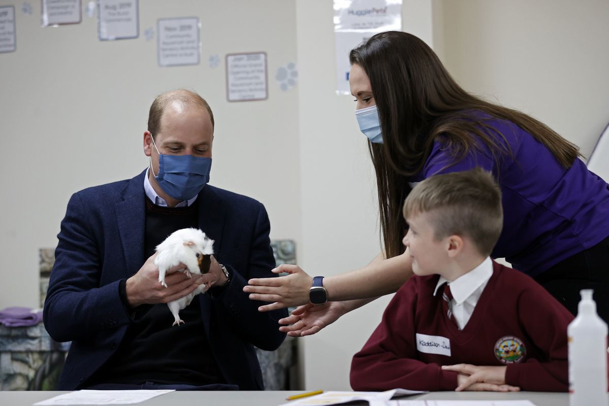 The Duke of Cambridge handles Gus the guinea pig alongside children from Loxdale Primary School