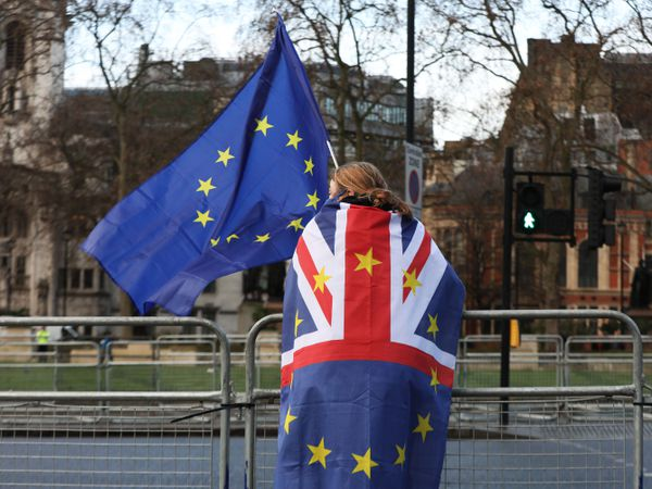 A pro-European Union protester outside the Houses of Parliament in London