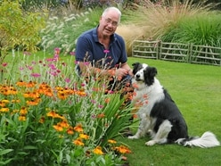 Spectacular three-acre garden to be unveiled in Kingswinford
