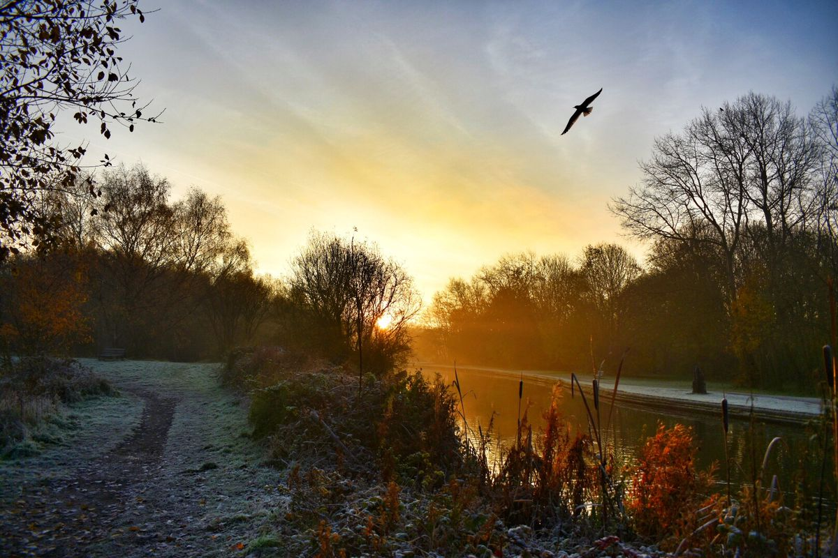 Bumble Hole Local Nature Reserve, by Greg Thompson