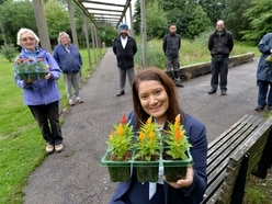 Wolverhampton park planting to swing into action