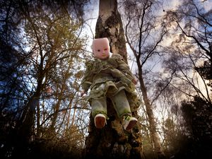 The mystery dolls in Cannock Chase
