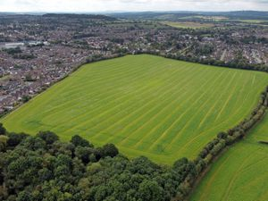 Green spaces such as Holbeache Lane could be lost to housing