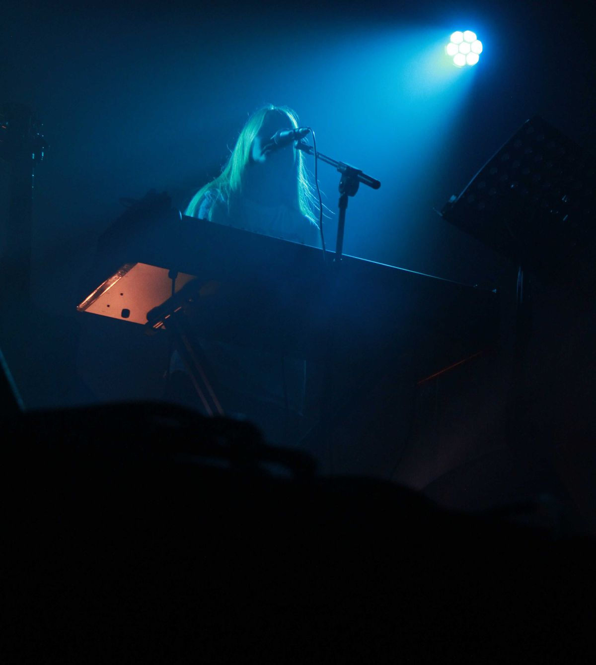 Anna Von Hauss at Supersonic Festival 2019. Pictures by: Andy Shaw