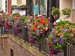 Bridgnorth's blooming good baskets renewed for another year