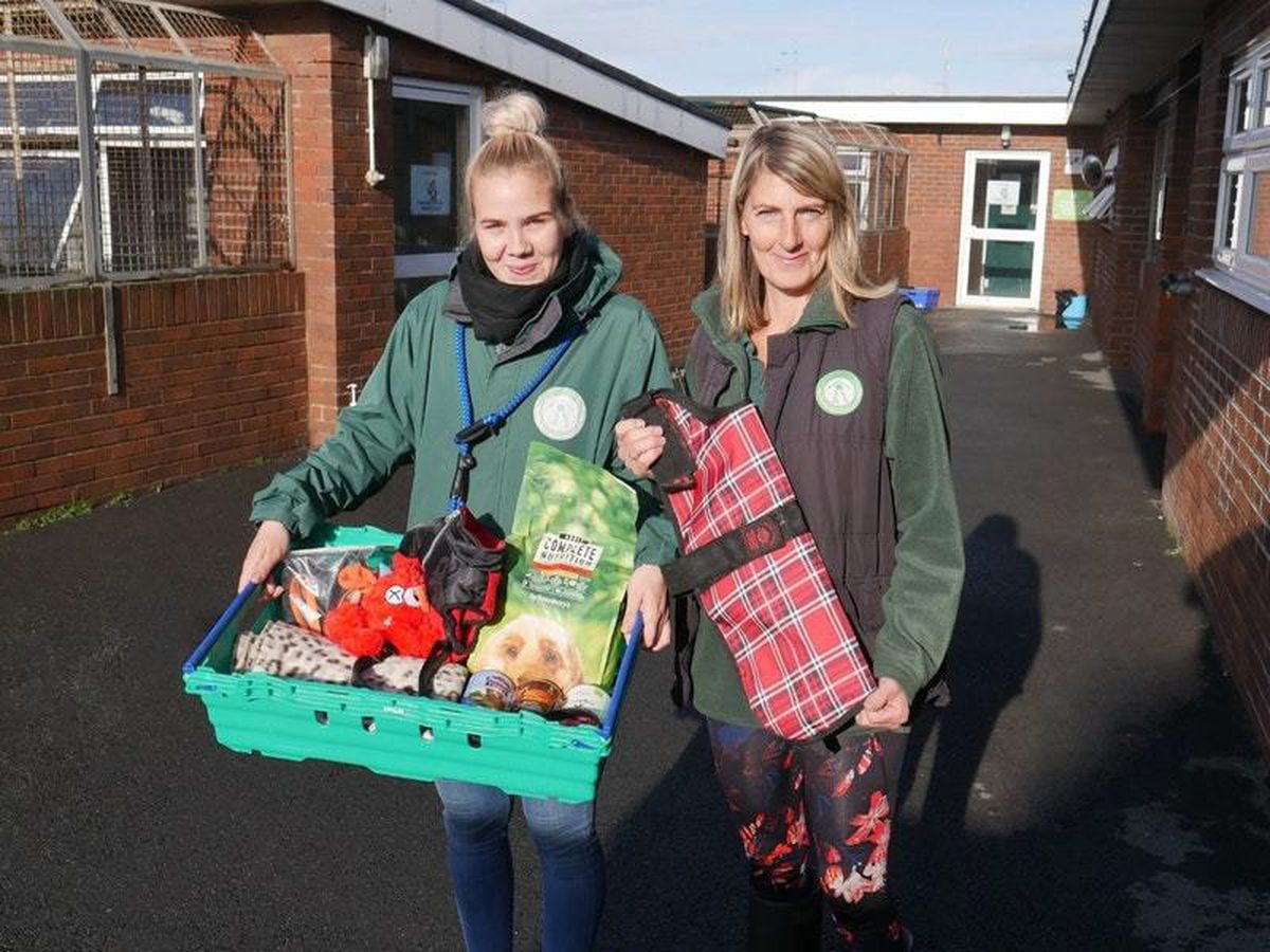 Edinburgh Dog and Cat Home staff with pet foodbank supplies