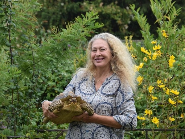 Pet tortoise reunited with owner after going missing for 15 months