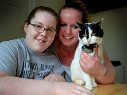 Beloved cat Porky back with Brownhills family