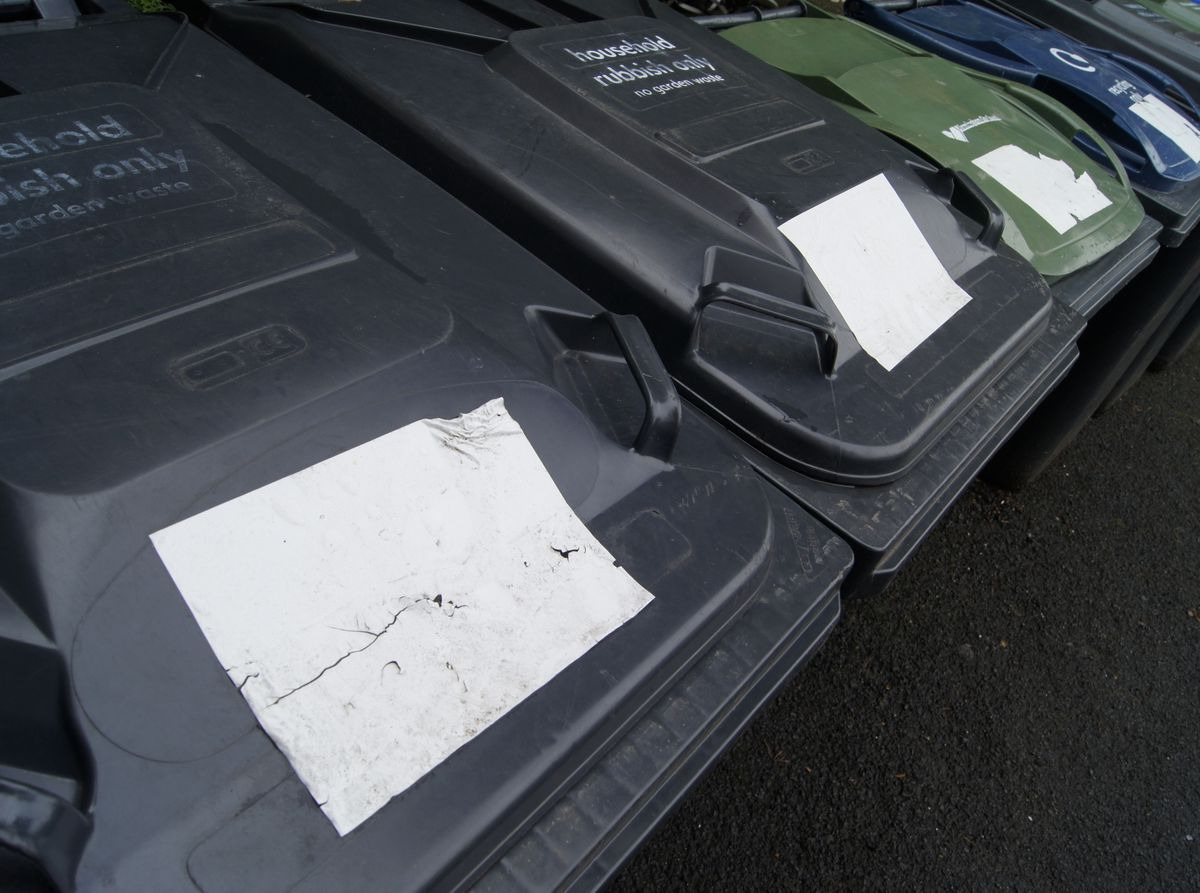 Birmingham City Council household waste and recycling bins.Photo: LDRS.
