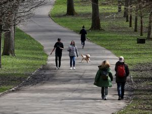 Walkers in park