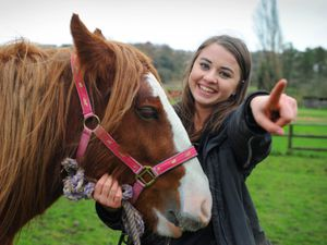 WALSALL PIC  / DAVID HAMILTON PIC / EXPRESS AND  STAR PIC 18/11/20 We need you....Appealing for support, as they are about to launch a JustGiving page, animal keeper Lydia Parker, of Wednesbury, with 'Ethel', at Brockswood Animal Sanctuary, Sedgley..