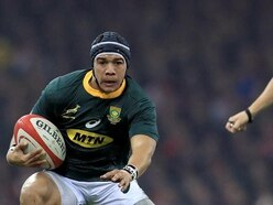Cheslin Kolbe confirms he avoided injury in South Africa's loss to New Zealand