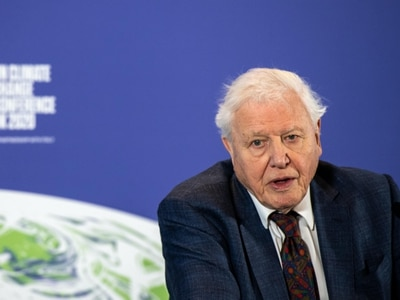 Sir David Attenborough: The time for pure national interests is over