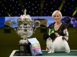 Crufts 2019: Highlights from the final day at Birmingham NEC