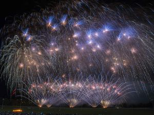 The Wolverhampton Racecourse fireworks in 2019. Photo: Wolverhampton Council.