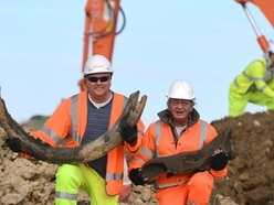 Digger driver found woolly mammoth tusk during motorway work