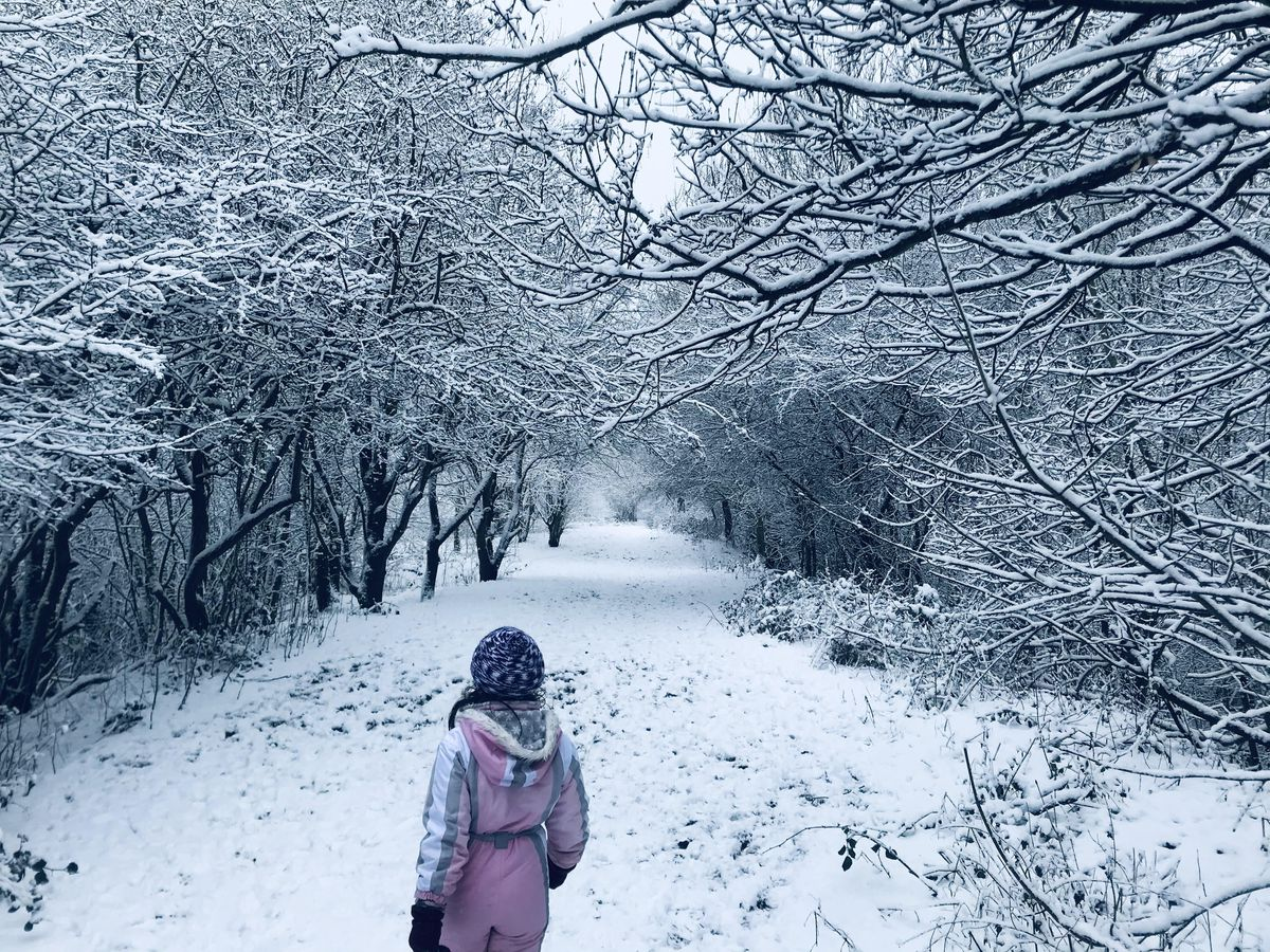 Morning walk at Bumble Hole and Warrens Hall Local Nature Reserve, Dudley. Pic: Elena Suciu