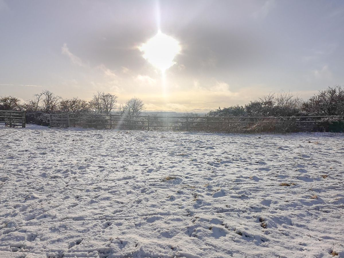 Snow in Hopton, near Stafford. Photo: SnapperSK
