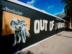 WATCH: Wolverhampton launches Project Relight film and mural with Wolves back in Premier League action