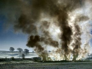 Smoke from burning pyres of animal carcasses became a familiar sight during the epidemic