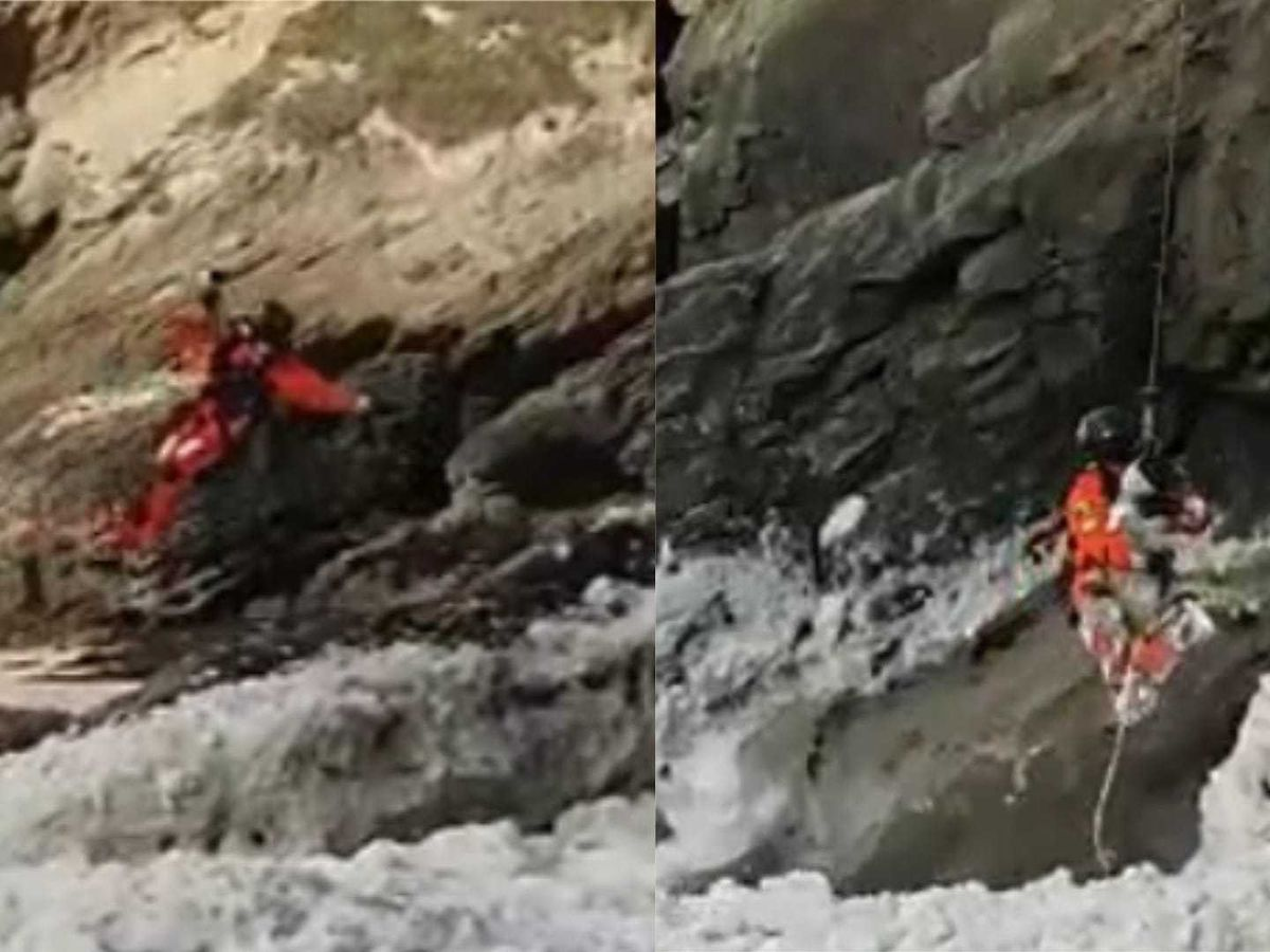 Dog rescued after getting stranded in sea in Cornwall