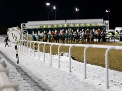 Cold weather takes its toll on Wolverhampton races